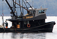 Commercial Fishing & Marine Industry